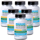 TetraSOD® - Marine Phytoplankton 5000 - Buy 6 Bottles & SAVE!